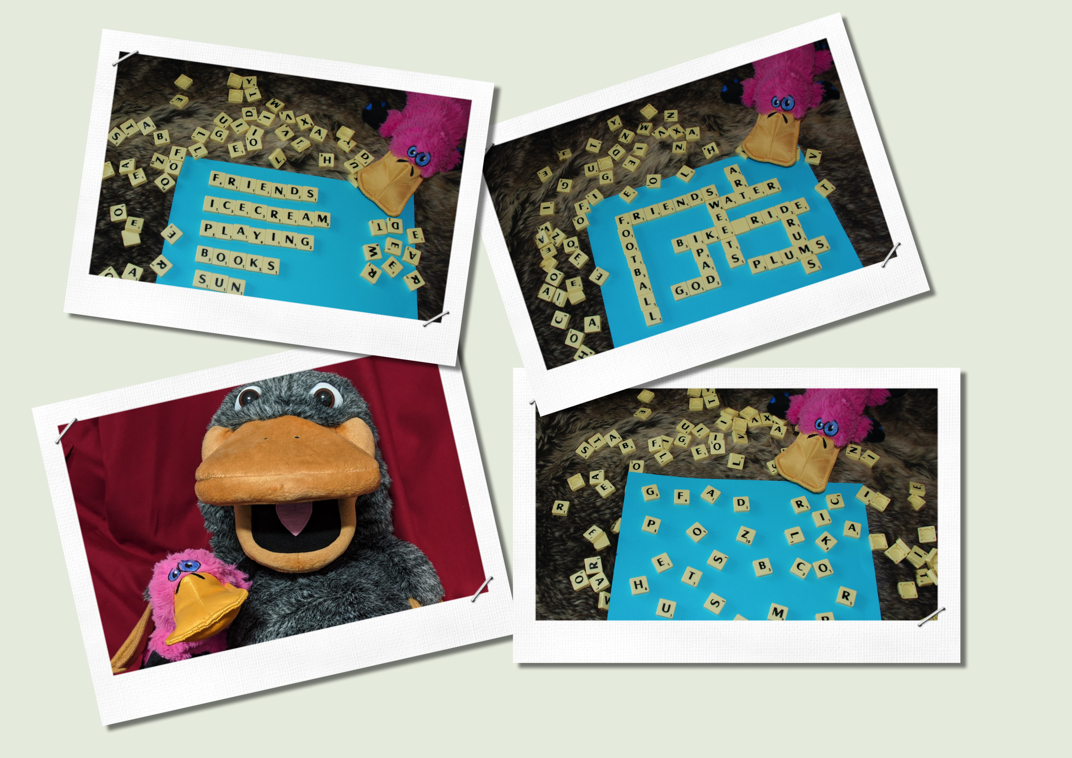 Three pictures of scrabble blocks being used for praying and on of a larger puppet platypus holding a smaller platypus toy